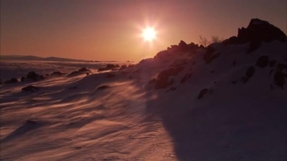Arctic Visions & Voices